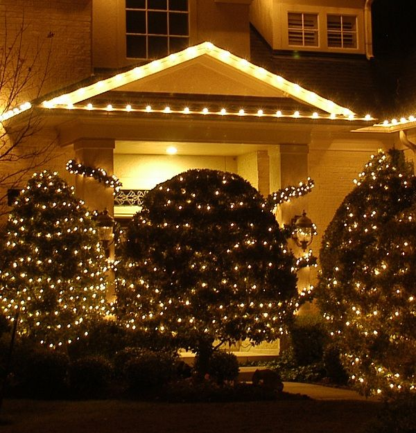 21 best lawn decorations images on pinterest xmas lights outdoor christmas lights idea for tall bushes aloadofball Images