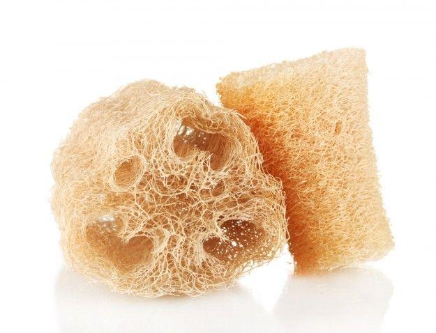 La luffa, aussi appelée loofa, est un fruit originaire d'Asie très apprécié pour en faire des éponges. Les faire pousser soi même est très simple avec ces conseils.