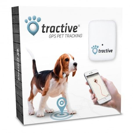 dog tracking gps iphone