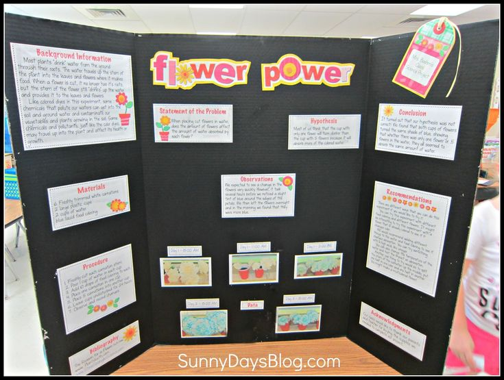 best interesting science fair projects ideas  no school project strikes fear in hearts of kids parents and teachers quite like the · easy science fair