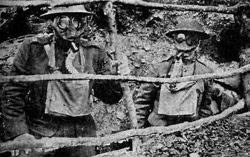 On 22 April 1915, the German Army employed a lethal asphyxiating gas for the first time at the second battle of Ypres on the western front. Amid the public outrage, there was considerable doubt as to the exact gas used. One Sunday newspaper surmised that it was carbon monoxide but, in an article just one week after the attack, Nature doubted whether a gas such as carbon monoxide that is lighter than air would be effective. A combination of scientific detective work and eyewitness reports led…