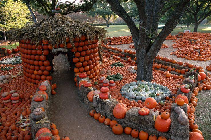 Pumpkin House and Garden… Pumpkin house, Dallas