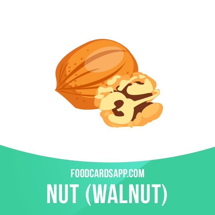 "The Greeks called walnuts ""karyon"", meaning ""head"", because the shell resembles a human skull and the walnut kernel itself looks like a brain! #walnut #nut #nuts #vegetarian #vegetarianfood #vegan #govegan #veganfood #food #english #englishlanguage #englishlearning #learnenglish #studyenglish #language #vocabulary #dictionary #vocab"
