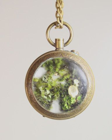Vintage pocket watch terrarium, with chain, from The Slug and The Squirrel, available at faeriemag.com!