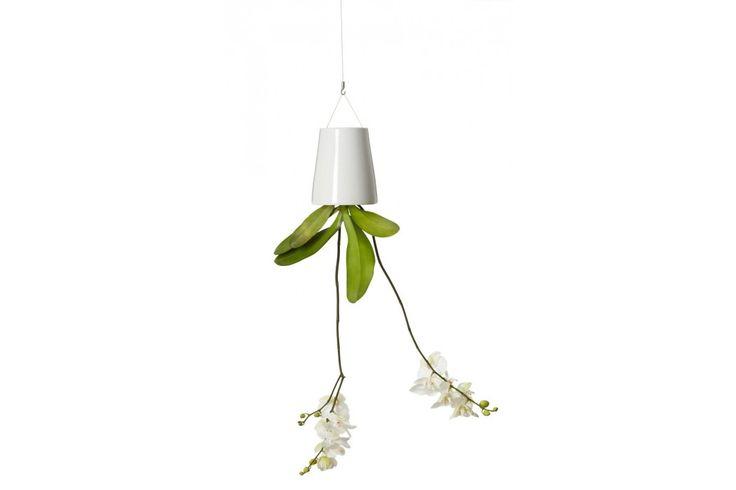 De Sky Planter Ceramic (Boskke) TOP Sinterklaascadeau | #sinterklaas #sinterklaascadeau #sinterklaaskado #top10 #sint #moederdag
