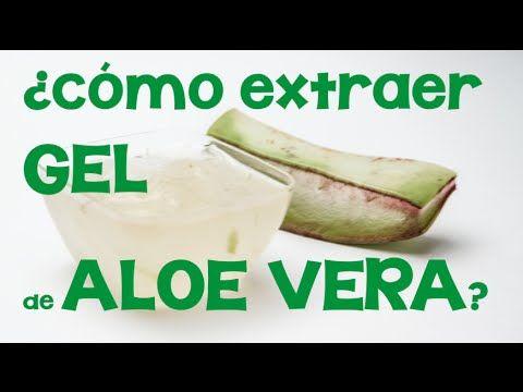Jabón casero de aloe vera :: Receta casera de jabón de aloe vera o sábila