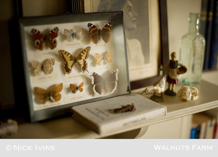 Walnuts Farm – the rustic shoot location house | Butterflies