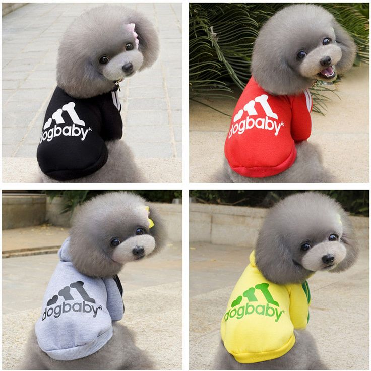 Dog Puppy Hoodie Coat Clothes Apparel Sweater Soft Sports Jumper Cute Small Dog #IDEPET