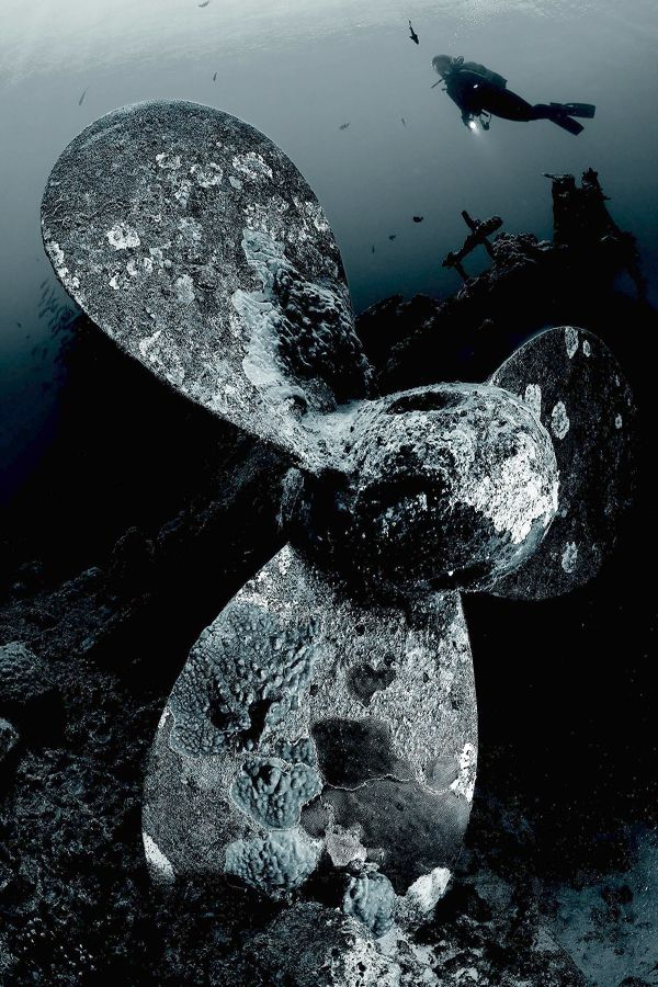 """analysis of the wreck of time Diving into the wreck poem analysis  here the speaker brings the reader into the poem for the first time by use of the word """"we"""", she is still alone, and yet ."""