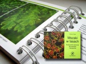 """Lasy Państwowe wydały """"Mszaki w lasach"""" – przewodnik terenowy dla leśników i taksatorów Vitezslava Plaska. Książka przybliża fascynujący świat mszaków."""