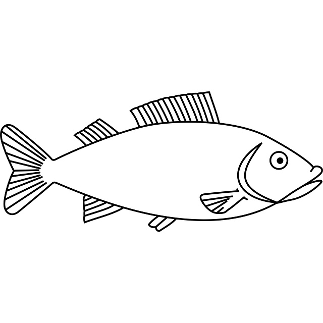 Fish template to embroider http://pixabay.com/static/uploads/photo/2012/04/18/00/12/water-36206_640.png