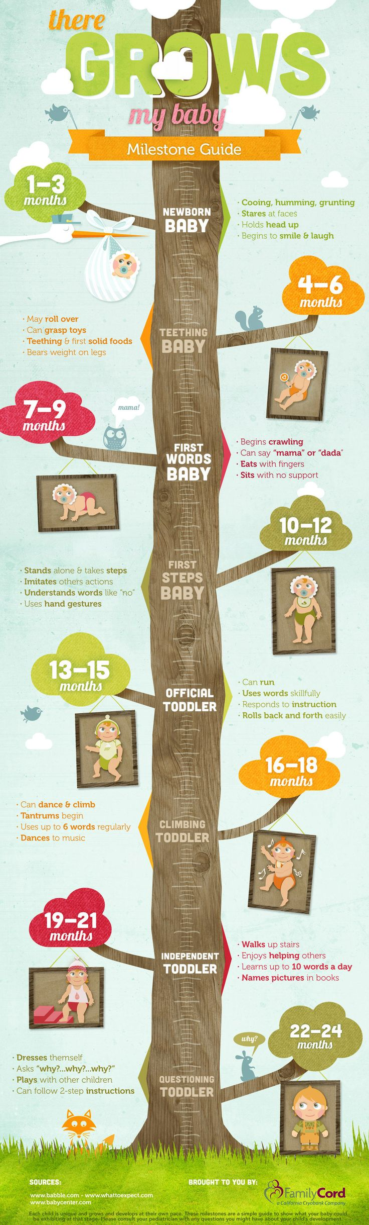 There Grows My Baby infographic-milestones from newborn to 24 mos.
