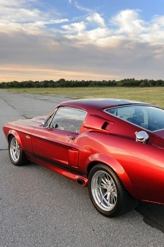 Ford Mustang Shelby GT500 #Cars #Speed #HotRod