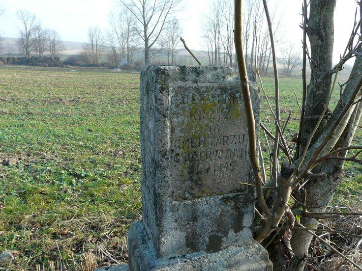 """Napis na tablicy: """"Ostatni krzyż na cmentarzu cholerycznym z roku 1845"""