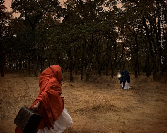 """""""Flee To The Forest"""" Photo Print in multiple sizes. 