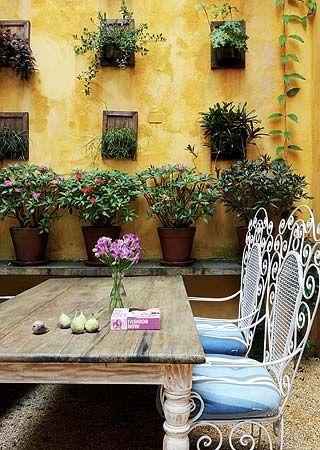 Bij kleine tuintjes kan je de muren gebruiken om toch groen in je tuin te hebben | Marcelo Magnani