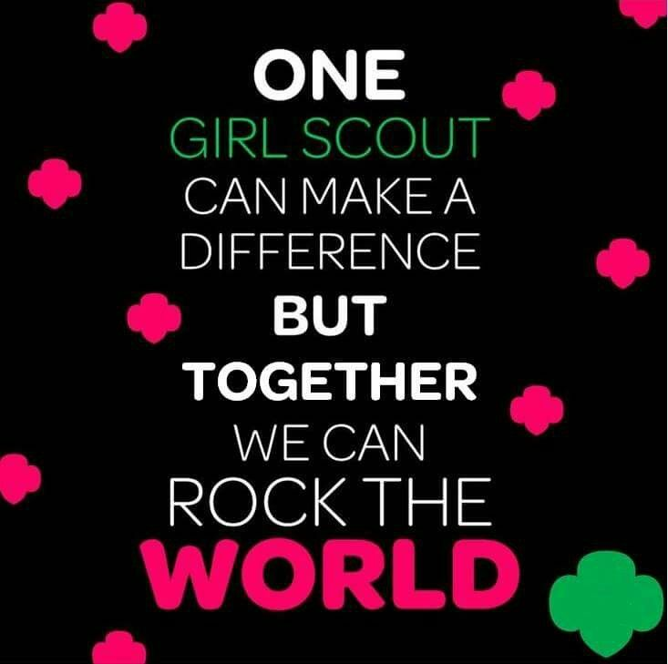 Image result for pink and green girl scouts