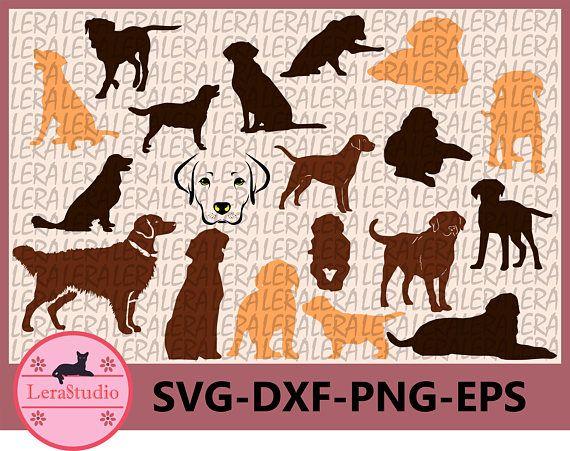 60 Off Labrador Retriever Silhouettes Dog Svg Eps Png Cut Files