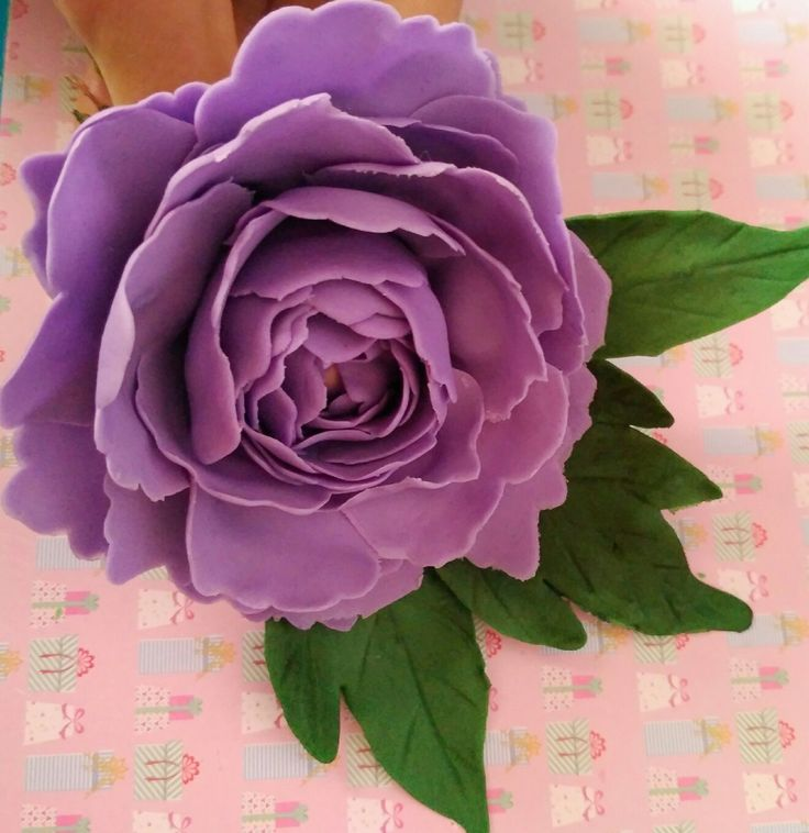 Violet sugar paste Peony. https://www.etsy.com/listing/573763181/large-peony-40-petals-edible-sugar-paste?ref=listings_manager_grid