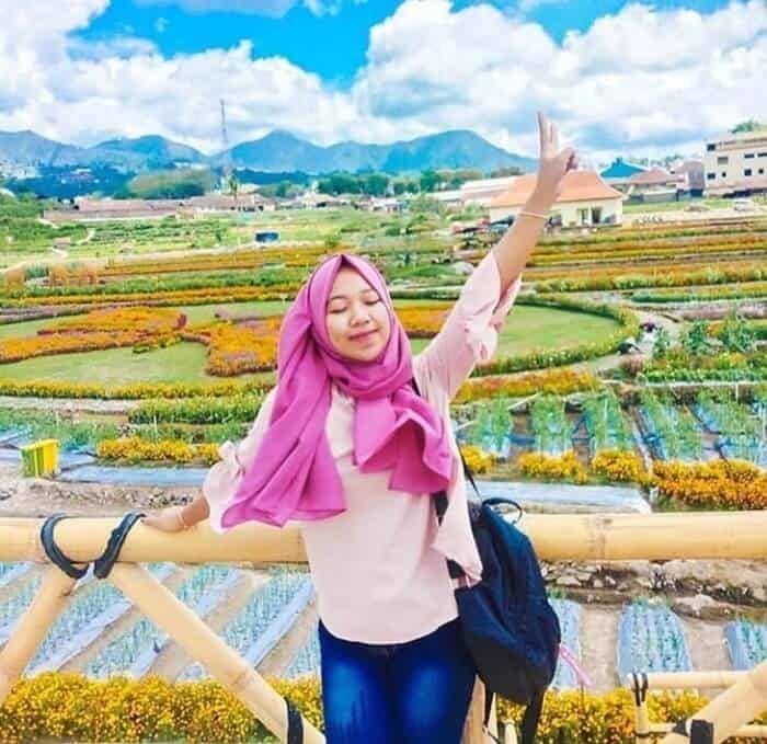 Kebun Refugia Magetan 2 5 Hektar Warna Warni Bunga Pengusir Hama Kebun Bunga Hortikultura