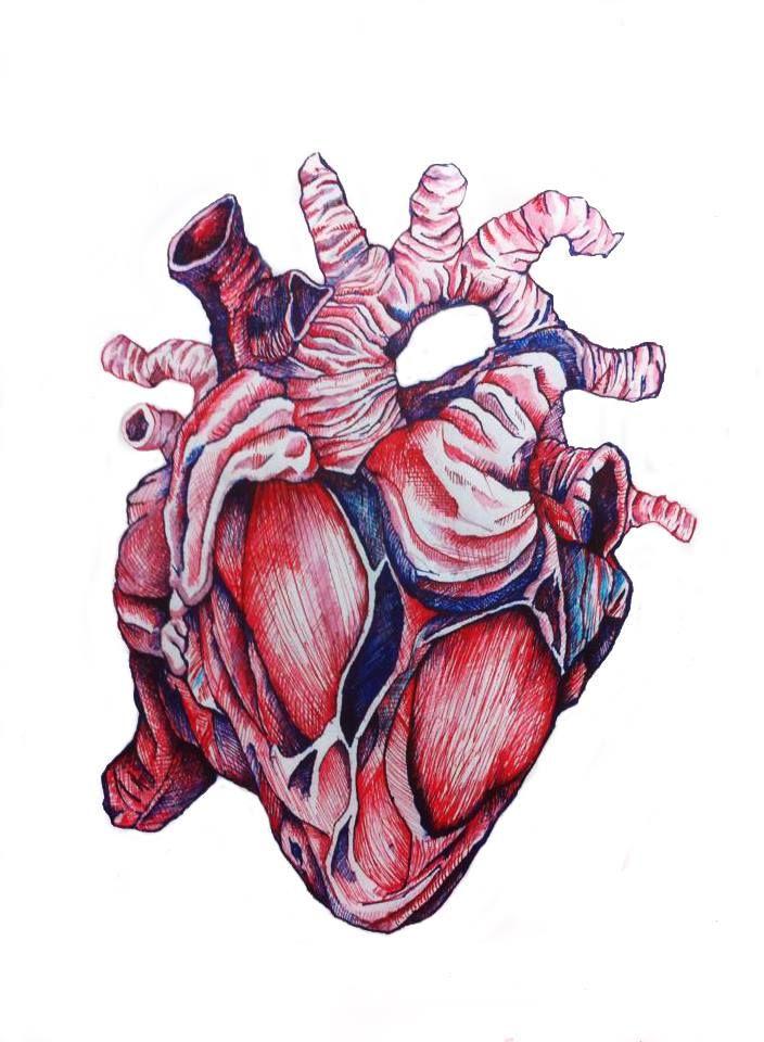 Corazón. Pluma y Tinta sobre papel.