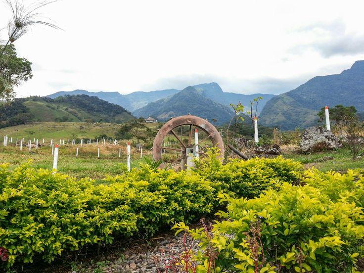Views of Andes Mountains in Villavicencio, Colombia
