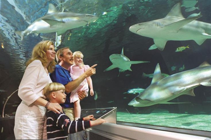 17 Best Images About Vacation Minnesota On Pinterest