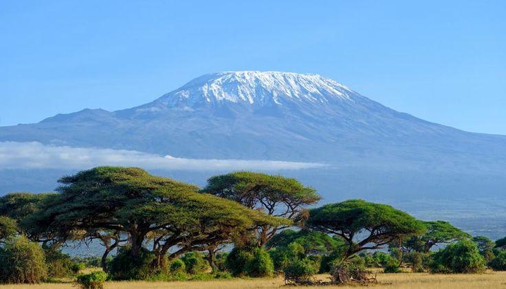 Kilimandscharo National Park Reiseführer