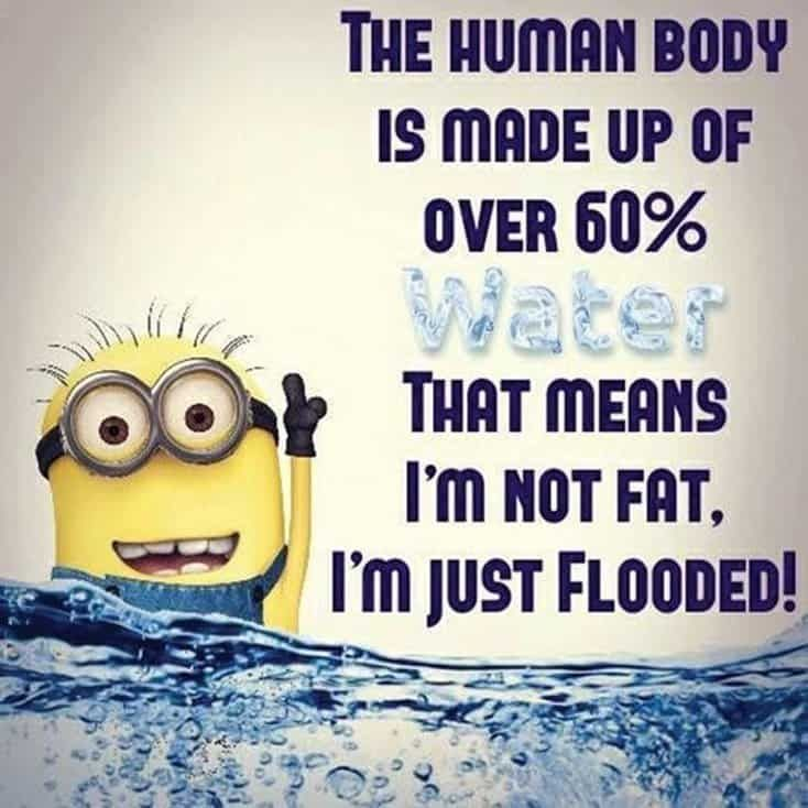 150 Funny Minions Quotes Sayings And Pics 40 Funny Minion Quotes Fun Quotes Funny Minions Funny