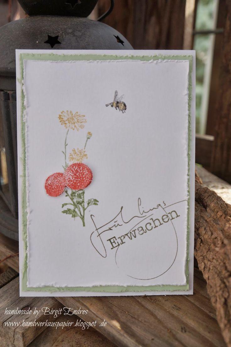 HandWerk aus Papier: Frühlingserwachen  #StampinUp #SU #Frühling #Blume #Biene #Spring #Flower #handwerkauspapier