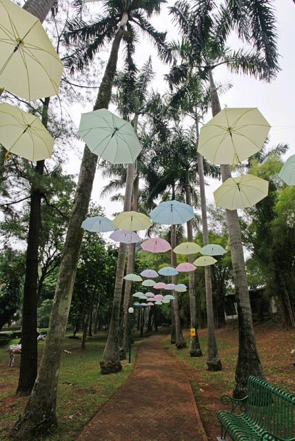 Umbrella Canopy, Jakarta-Indoesia