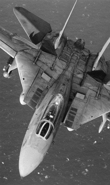 F-14 Tomcat... El avión más bonito de la historia de la aviación...