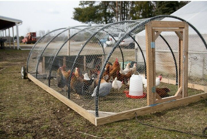 Hoop style chicken tractor hobby farming pinterest for Big chicken tractor