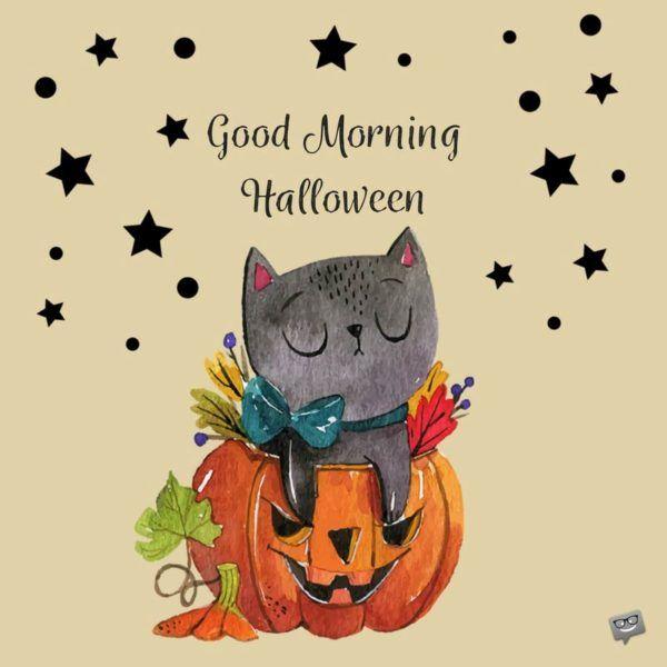 54 Best Love Halloween Images On Pinterest Happy Halloween Halloween Decorations And