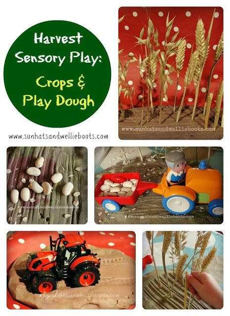 Celebrating Harvest - 21 Activities for Children to Explore