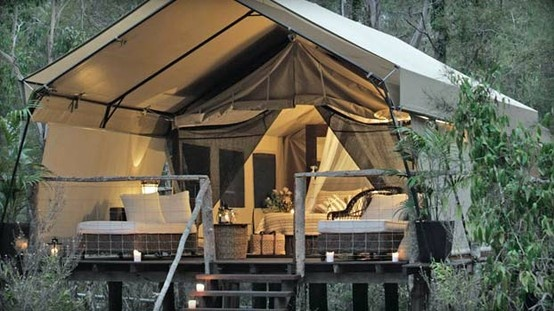 camping camping campingIdeas, Outdoor Living, Dreams, Tree Houses, Treehouse, Trees House, Places, Tents Camps, Backyards
