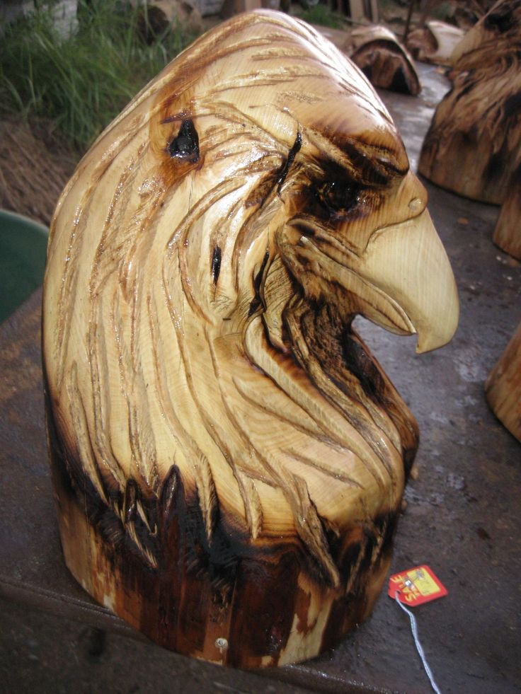 Eagle carving bust chainsaw sculpture wood