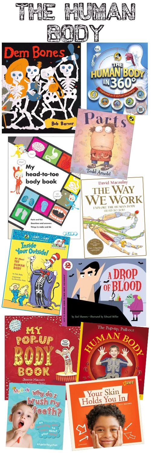 Today we present a diverse range of body books that will assist your child to explore the human body further, and perhaps answer some of their pending questions.