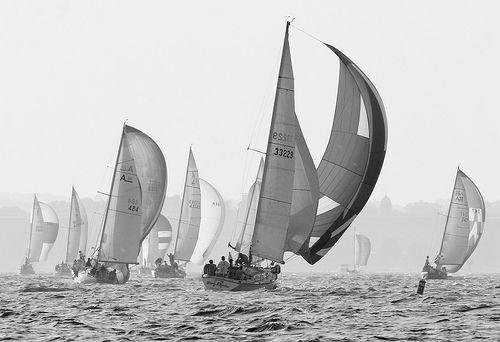 Annapolis Sailboat Races