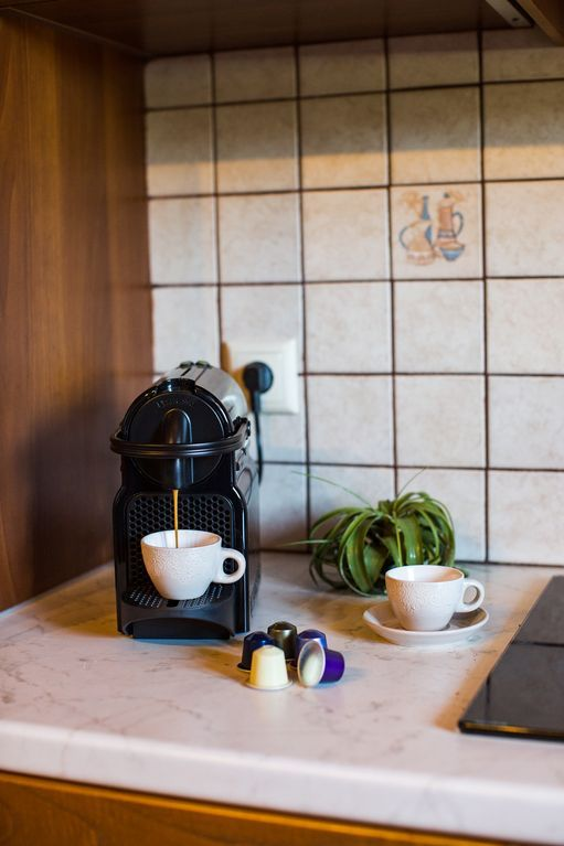 Foinikas villa rental - A Nespresso machine is also available!