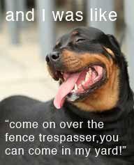 Rottweiler  love this one!  www.puppystarterkits.com
