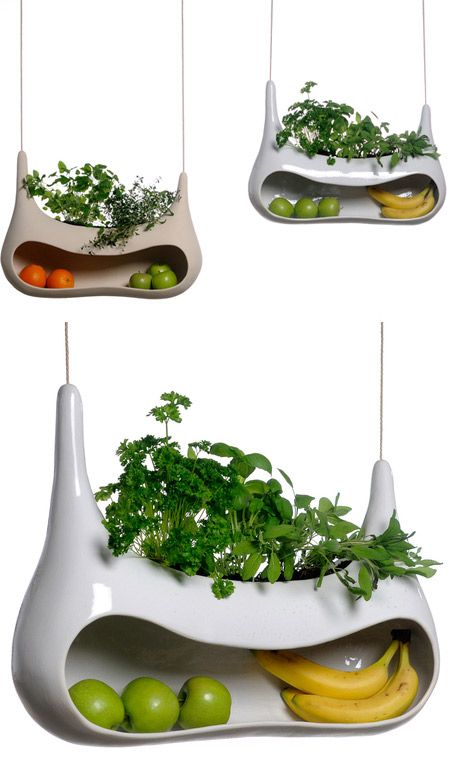 Modern fruit bowl. Herb garden on top, fruit on the bottom.