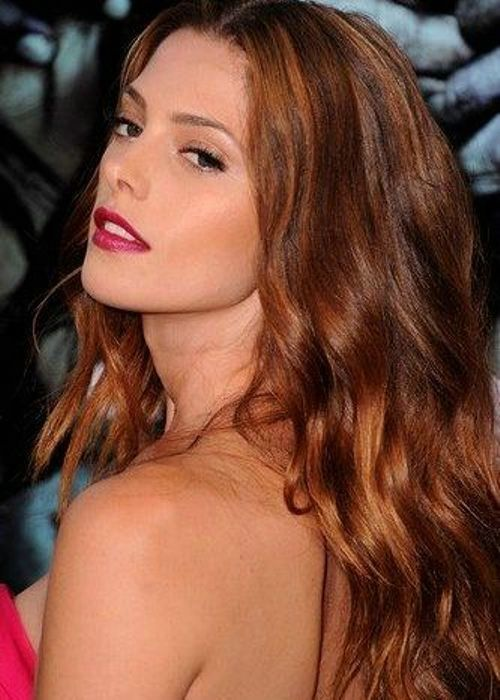17 Best images about Auburn Hair Colors on Pinterest ...