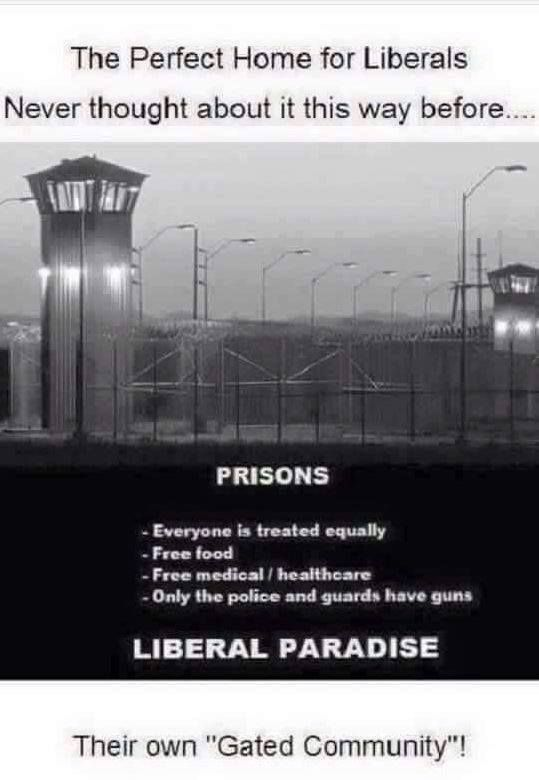 That's not to say liberals should be imprisoned. I just happen to work in a jail and I know that would make liberals happy.
