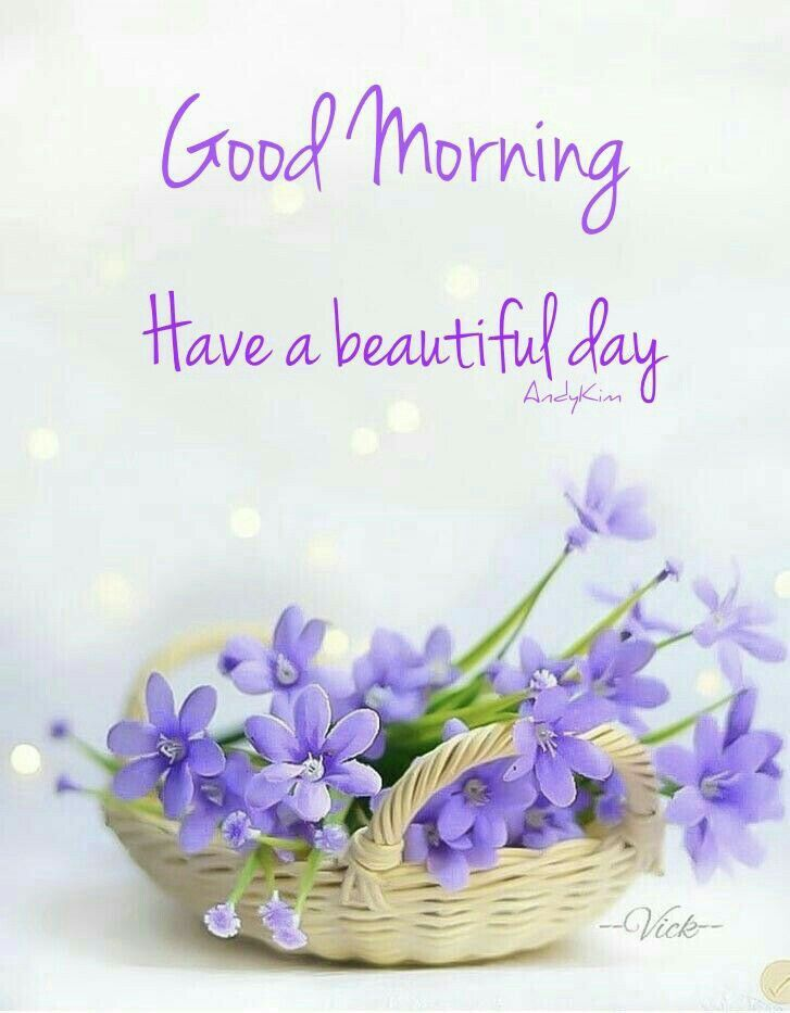 Pin By Cutipieanu On Good Morning Pinterest Morning Quotes