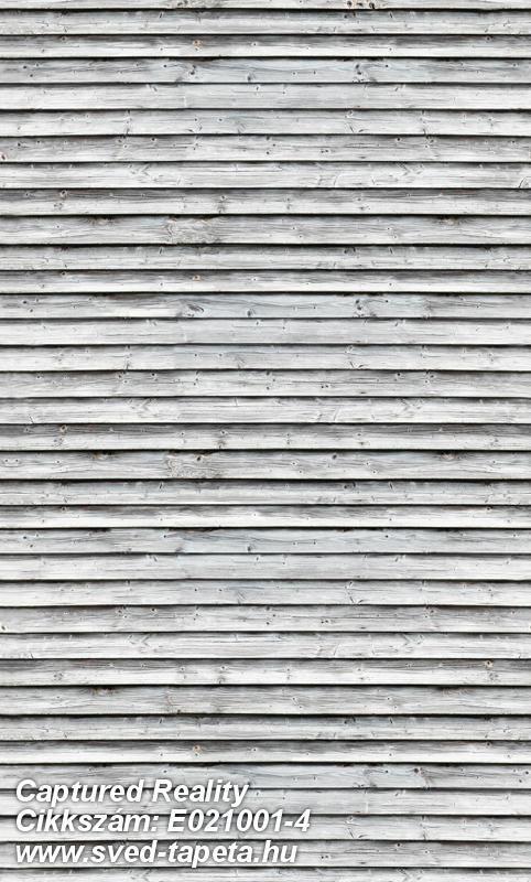 Méret:180 x 300 cm Cikkszám:E021001-4 #tapéta #fotó #poszter #fotótapéta #wallpaper ☞ www.sved-tapeta.hu