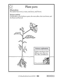 our 5 favorite prek math worksheets social studies and worksheets. Black Bedroom Furniture Sets. Home Design Ideas