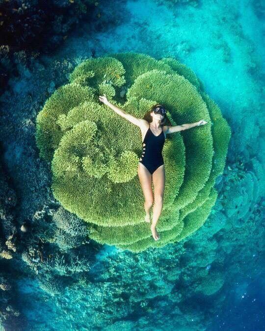 Bunaken Island, Manado, North Sulawesi, Indonesia.