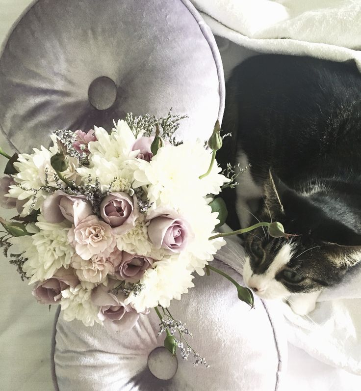 country floral and cat #wedding #pastel #bouquet