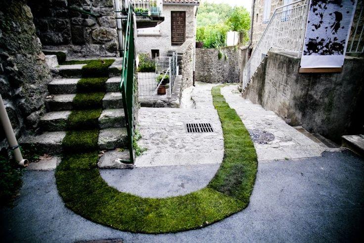 pflanzen design ideen moos